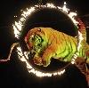 Цирки в Емельяново